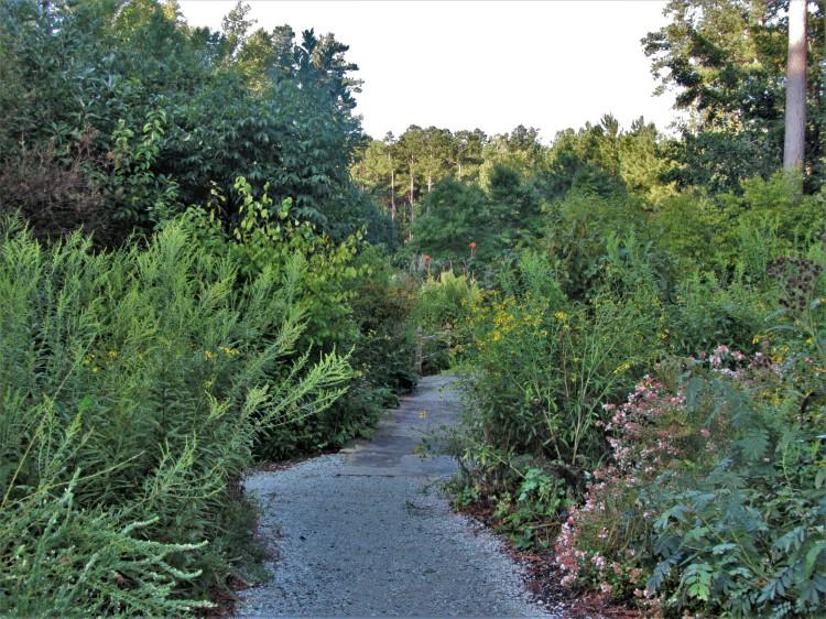 September 21, 2020 The Williamsburg Botanical Garden